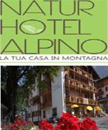 Natur Hotel Alpino - San Martino di Castrozza
